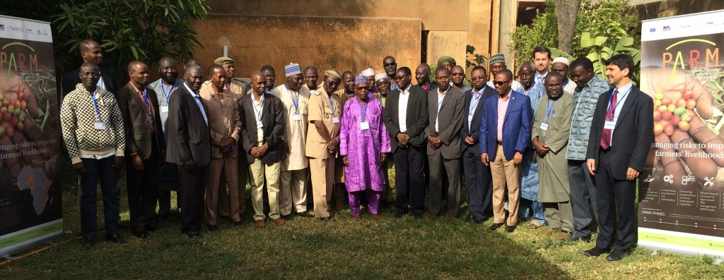 Participants of the Capacity Development Seminar held in Niamey on 9 December 2015.