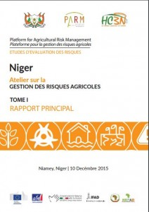 niger RAS 1