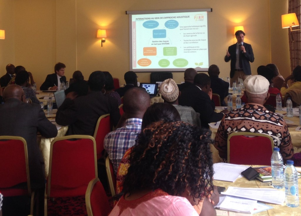 Presentation of the holistic approach to Agricultural Risk Management