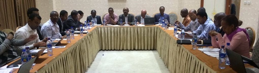Technical Meeting on Information Systems for Agricultural Risk Management in Addis, 31 May 2016